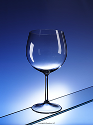 Rose: Blow moulded polycarbonate wine glass from Regalzone