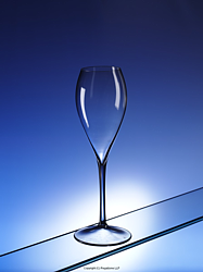 ELEGANTE: Blow moulded polycarbonate champagne glass from Regalzone